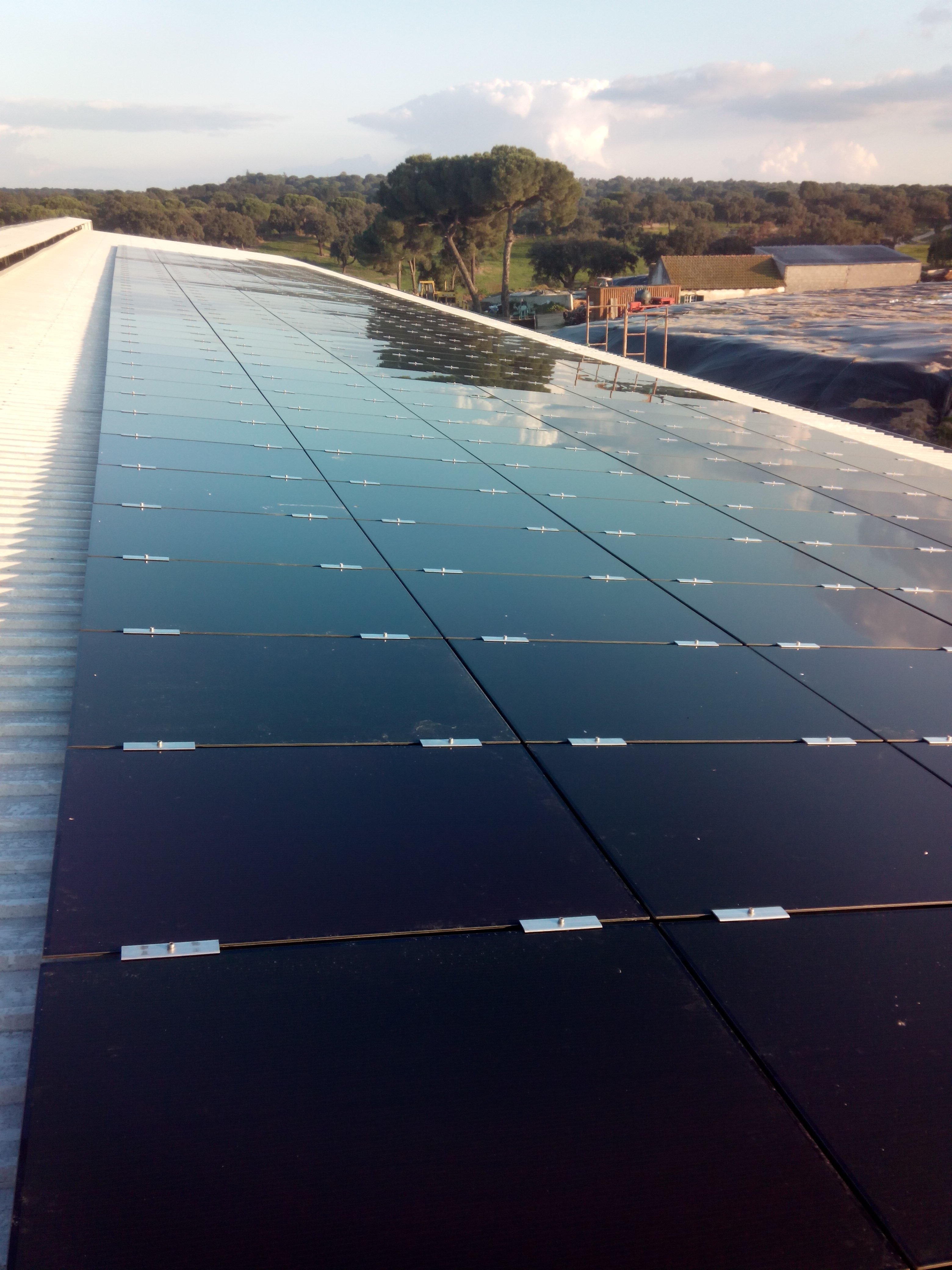 Commercial Solar Portugal
